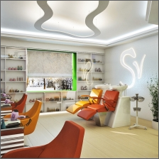 salon interiors 24